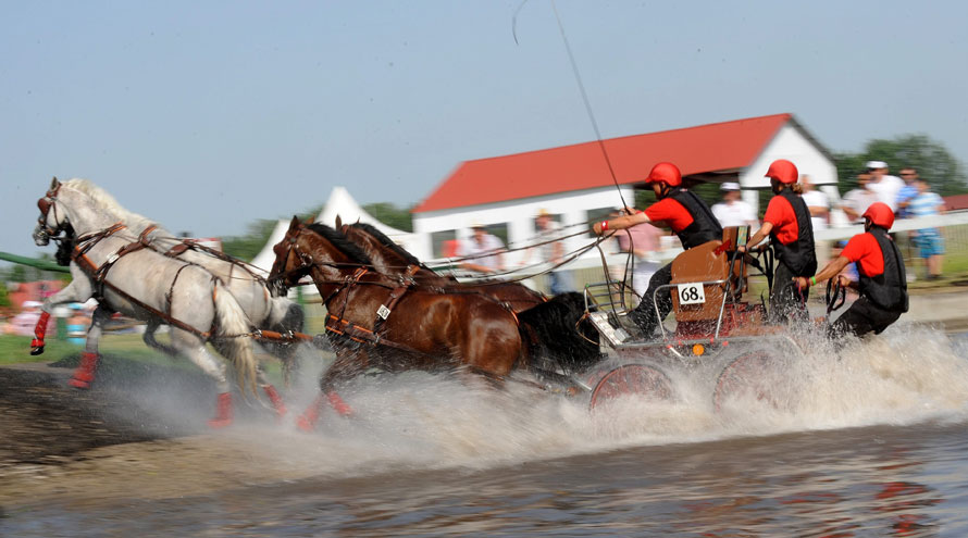14.06.2010 Венгрия