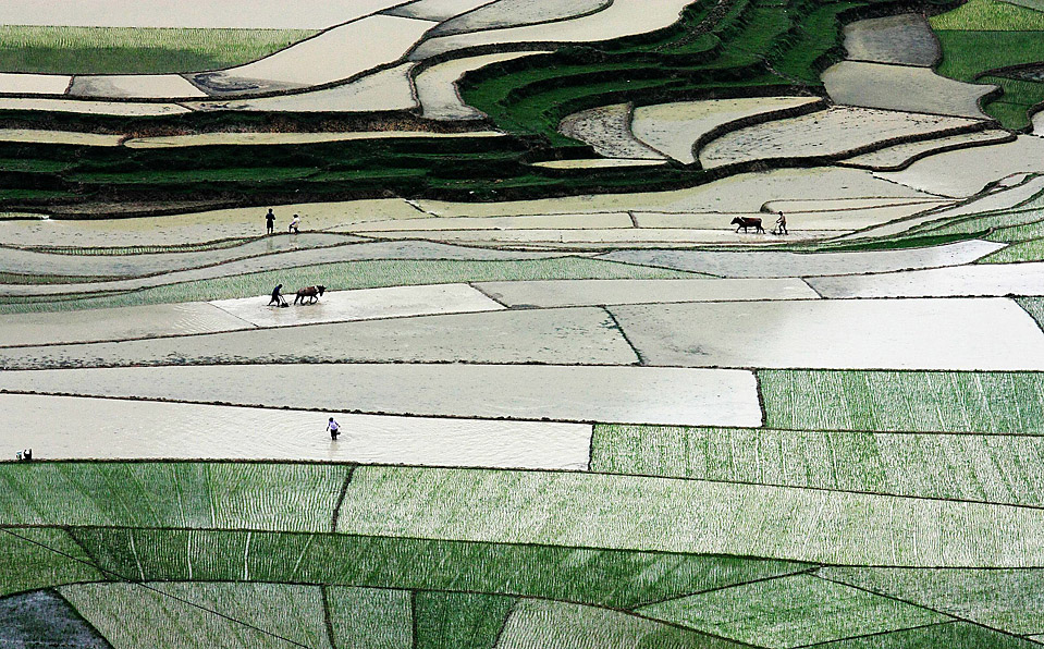 17.06.2010 Китай