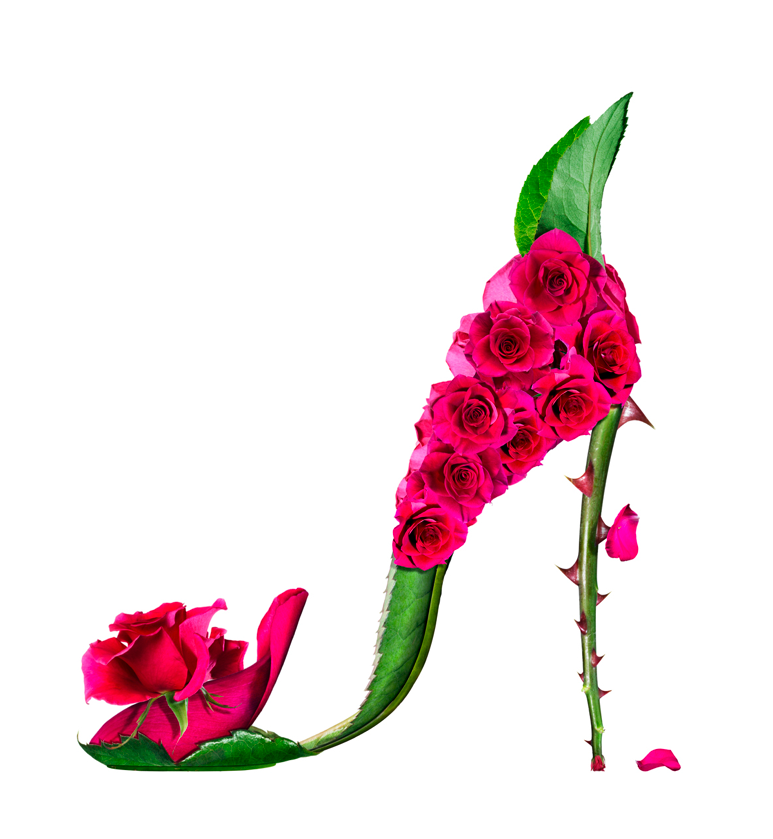Цветы фото туфелька