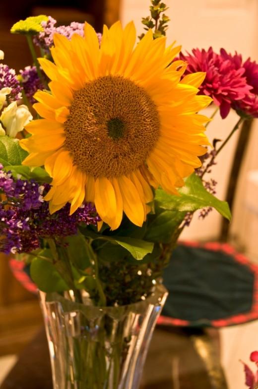 какие цветы подарить знакомой