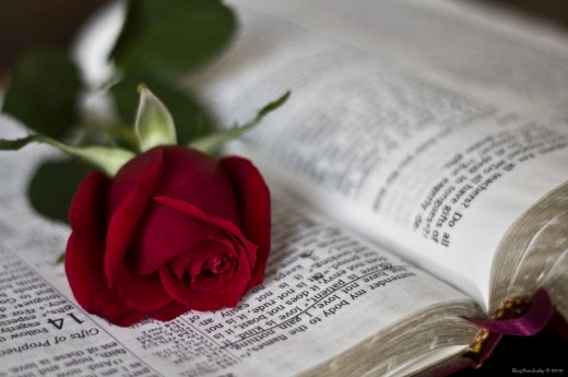 красивые фразы о любви и знакомства