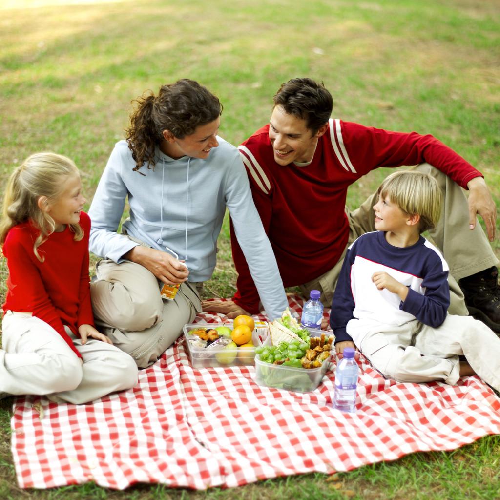 Жизни gt семья gt семья и ее традиции