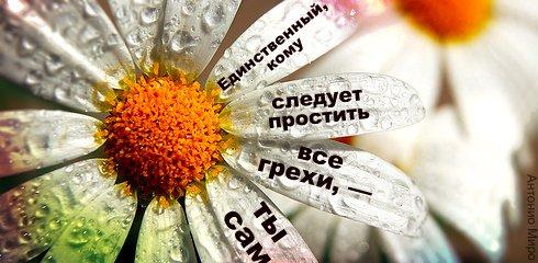 Правила жизни в картинках Citati_020
