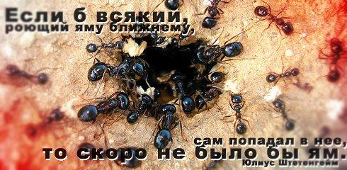 Правила жизни в картинках Citati_022
