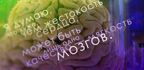 Правила жизни в картинках Citati_028