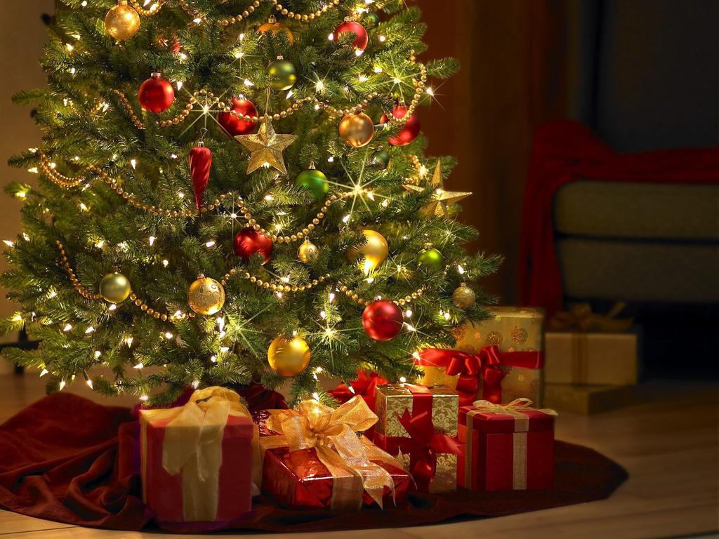 Как выбрать штучную и настоящую елку к Новому году