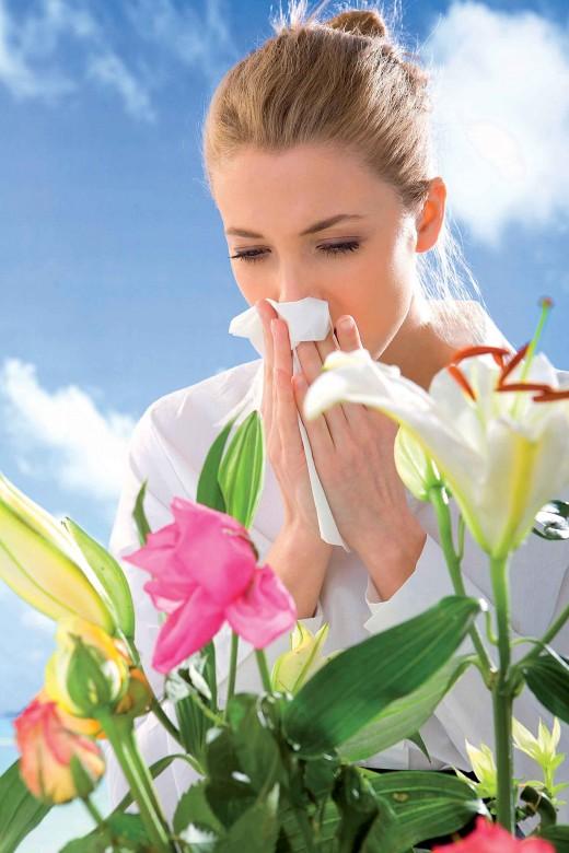 Аллергия в мае на что может быть аллергия