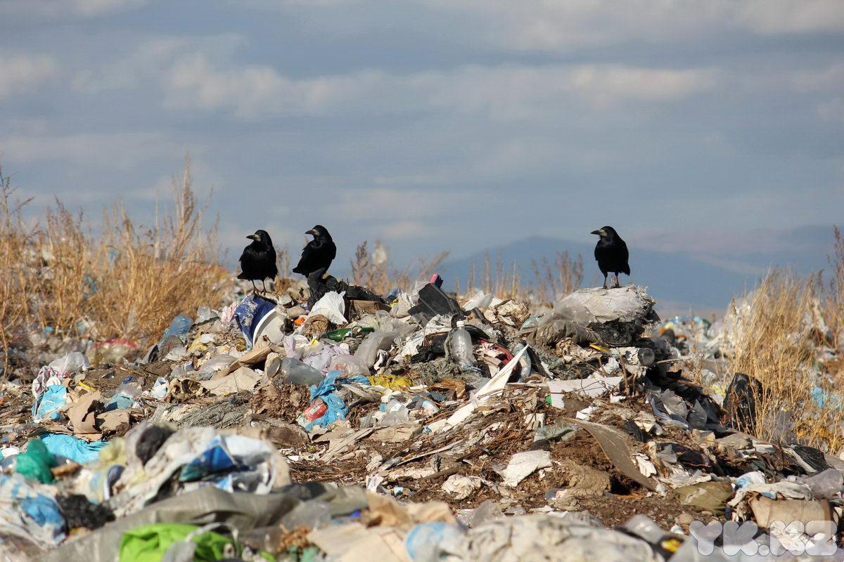 В Башкирии компания устроила нелегальную свалку бытовых отходов