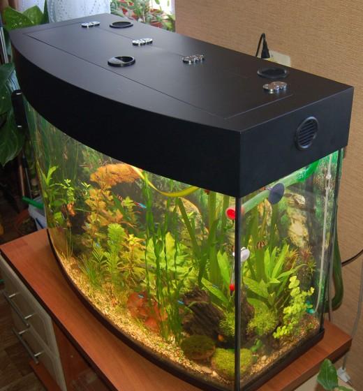 Качественные аквариумные крышки