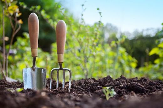 Предупреждаем рост сорняков
