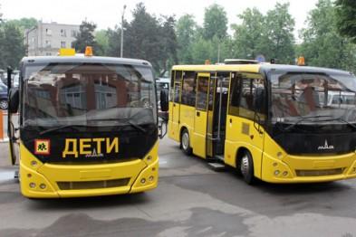 Временно отложен запрет Правительства РФ на перевозку детей устаревшими автобусами