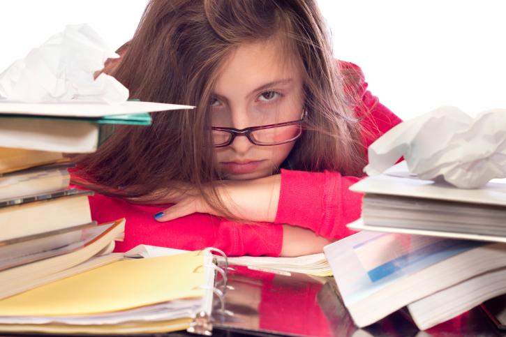 school work help