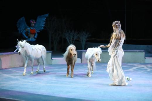 Леонид и Дарья Костюк возродили традиции Российского цирка