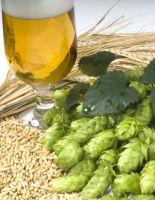 Древние правила пивопития