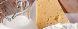 Французские ученые: свежие молочные продукты – признак здоровой диеты