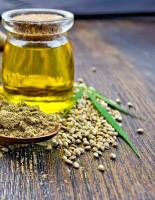 Семена конопли – богатый источник целебных веществ
