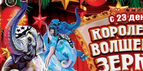 Лучшие артисты мира примут участие в международном цирковом шоу в Цирке на Фонтанке