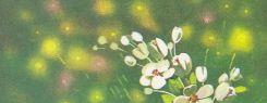 1 мая отмечают праздник Весны и Труда