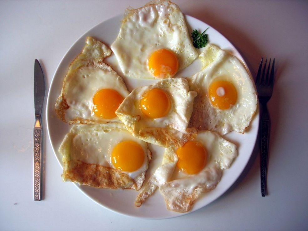 Яйца, сыр и булка с медом - польский завтрак на Евро-2012 / Новости / EURO-2012 / Футбол / Спорт-Экспресс в Украине