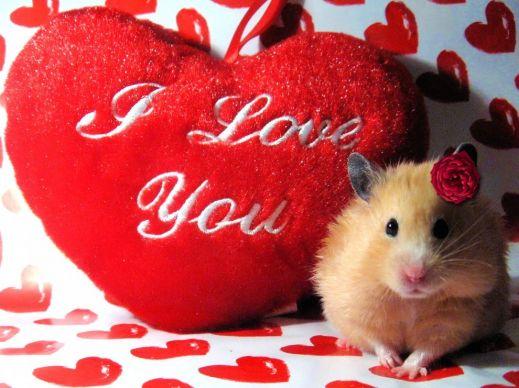 Подарки для одноклассников картинки о любви