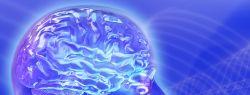 Человеческий мозг стал меньше на 14 миллиардов нейронов