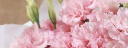 Служба доставки цветов: история и современность