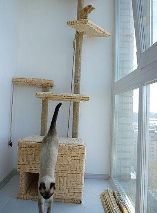 Как сделать домик для кошки своими руками быстро