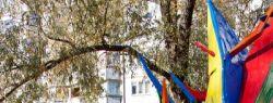 «День Дела Лайф» помог жителям Тулы изменить свой город