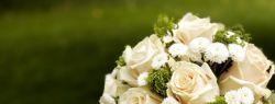 Как правильно выбрать фотографа на свадьбу?